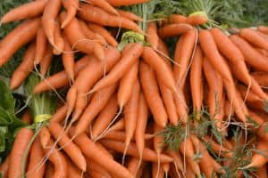 carrots - one of the value best buys for paleo ingredients per calorie, by ANDI rating and price