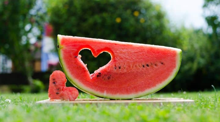 Featured Image of watermelon with heart shape cut out. Used to symbolize article about whether it's possible that the paleo diet reverse heart disease. In looking in depth at the Paleo diet and Heart Disease we examine recent research, personal testimonials and articles across the web on the topic, trying to answer the question: Does the Paleo Diet Lower Cholesterol? Looking at Paleo diet cholesterol results, Paleo Diet Heart Attack risks, Paleo high HDL results and Low cholesterol Paleo diet options, we cover a wide range of topics on Paleo and heart health