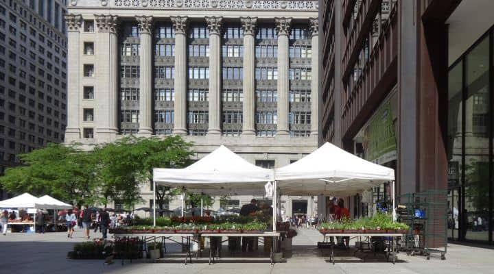 Photo of Daley Plaza Farmers Market, a place for picking up local Chicago organic high quality produce and natural meats, the same ingredients that are offered by healthy food delivery Chicago companies like those listed in this article and served at Paleo restaurants Chicago locations. This guide will cover all the best Paleo meal delivery Chicago options available.
