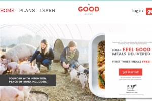 screenshot of The Good Kitchen home page - one of the places we often get our Paleo meals delivered from